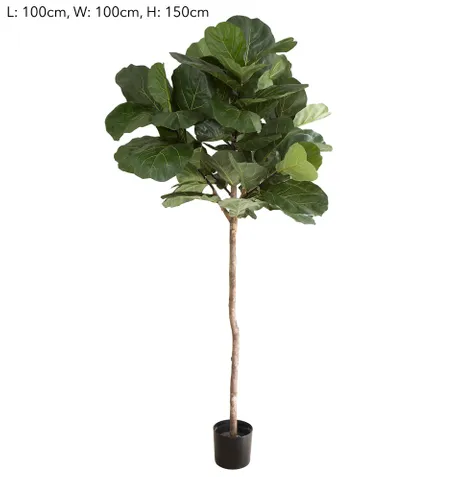 Top product image